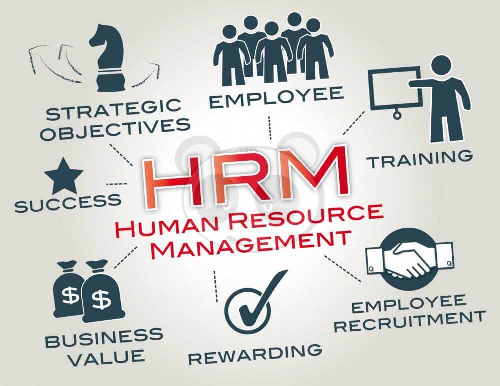Phần mềm HRM - giải pháp tốt cho nhà quản trị