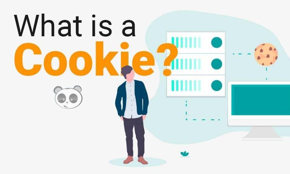 Cookie là gì? Phân loại cookie trình duyệt