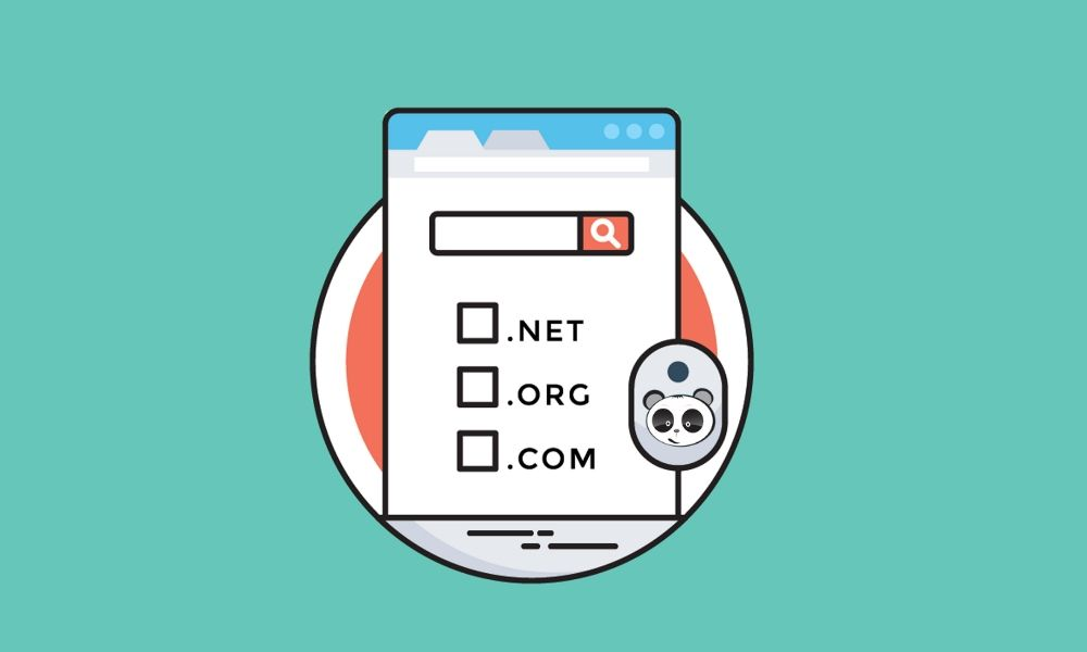Chọn Domain Hosting khi thiết kế website Cà Mau
